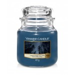 Świeca Yankee Candle A Night Under The Stars, średni słoik (411g)